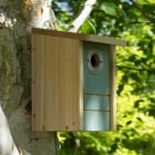 3 in 1 Nestbox/Feeder