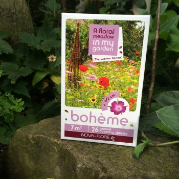 """Boheme"" - A Mix of Summer Flower Seeds"