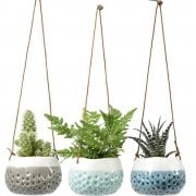 Box of 3 Hanging Dotty Planters