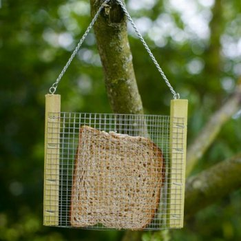 Bread Feeder for Birds