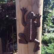 Cast Iron Frog Thermometer