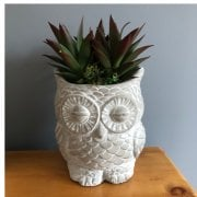Decorative Owl Planter