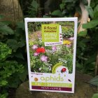 Flower Seeds to Deter Aphids in the Garden