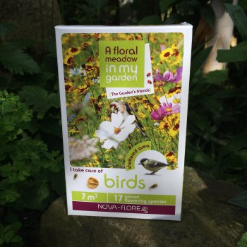 Flower Seeds to Encourage Birds into the Garden