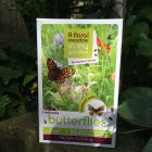 Flower Seeds to Encourage Butterflies into the Garden