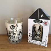 """Fireside Friends"" Cedarwood, Patchouli, Musk & Incense Fragranced Candle"