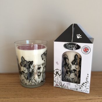 "Fragrant Paws ""Winter Walkies"" Cinnamon, Clove, Sweet Orange & Vanilla Fragranced Candle"
