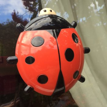 Fun Ladybird Window Thermometer