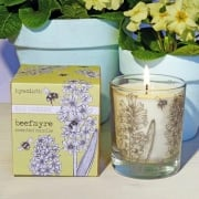 Hyacinth Fragranced Large Candle