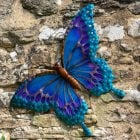 Large Butterfly Glass Wall Art