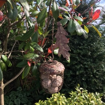 Rustic Acorn Fat Ball Feeder