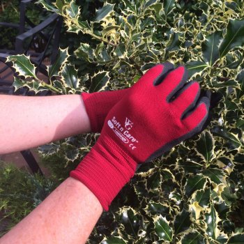 Soft n Care Landscape Burgundy Gloves - Small
