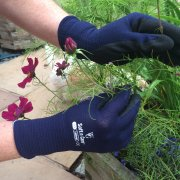 Soft n Care Landscape Navy Gloves - Medium